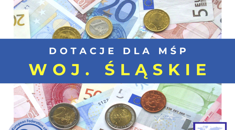 Dofinansowanie na szkolenia w województwie śląskim – nabór wniosków 5-8 maja 2020r.